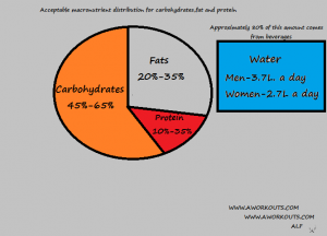 carbohydrate,fat and protein